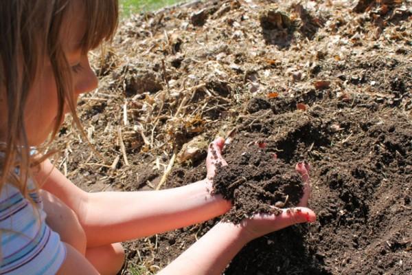 garden tip2
