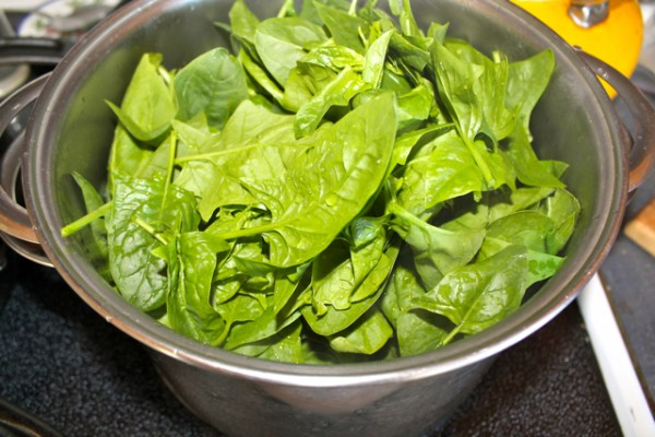 diy spinach5