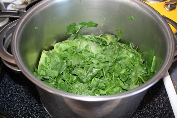 diy spinach6